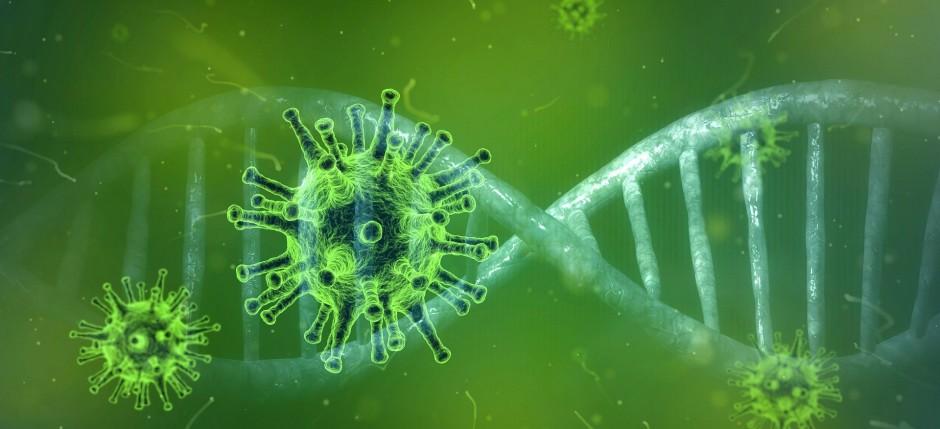 coronavirus cco pixabay